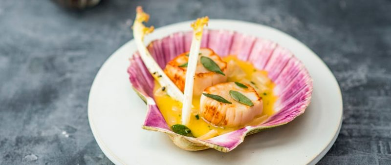 Scallops served in a shell at the Kitchin in Leith, Edinburgh