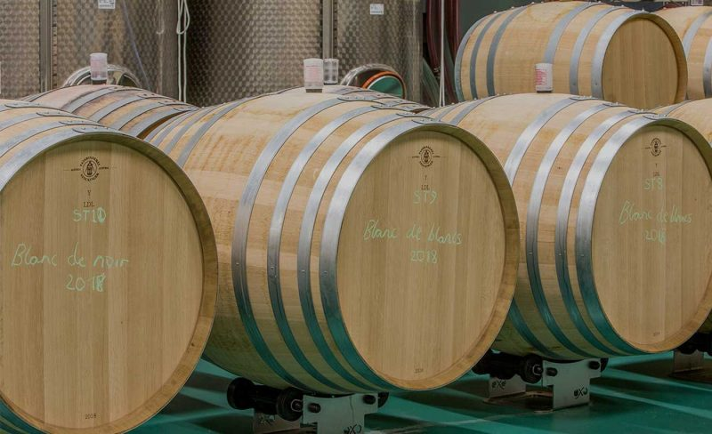 White wine barrels