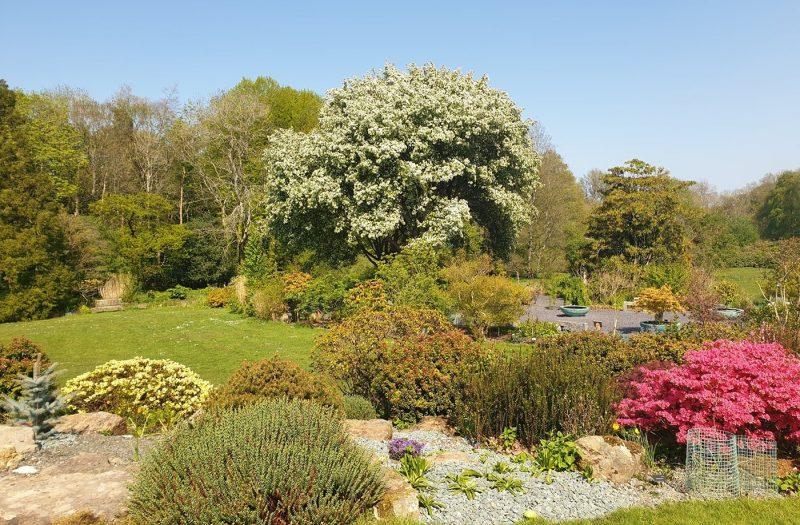 Treborth Botanic Gardens