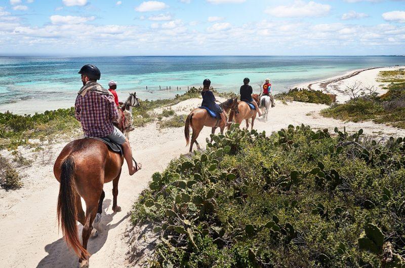 Horseback Riding in Grand Turk