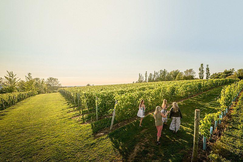 Grand Pré Wines in Annapolis Valley, Nova Scotia