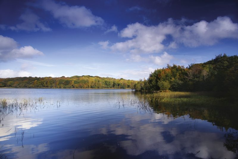 Picturesque shoreline of Lough Erne in Northern Ireland