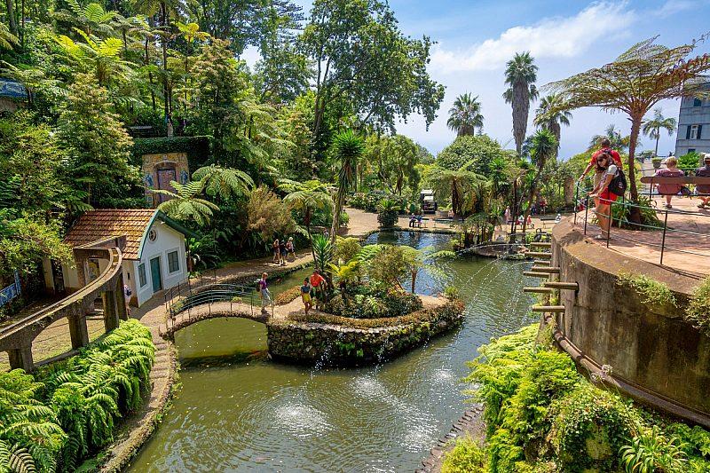 Monte Municipal Park, Funchal, Portugalia © Piotr Musioł