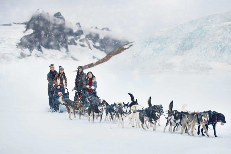 A group of people on an Alaskan mushing excursion being pulled on a sleigh by dogs