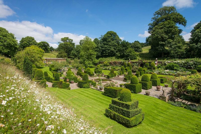 The perfectly manicured topiary at Mapperton