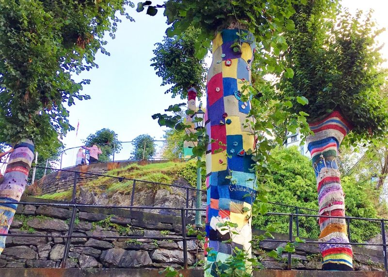 Tree cosies in Bergen, Norway