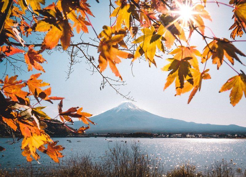 Autumn leaves over lake, with Mt Fuji