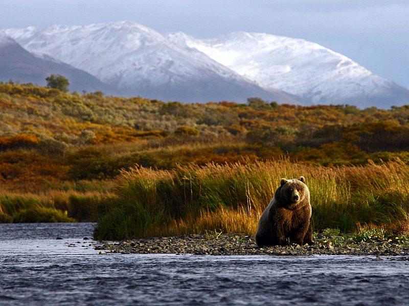 Alaska Kodiac Island