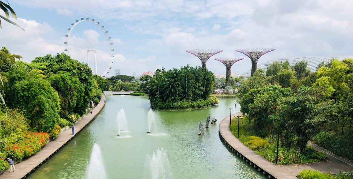 Dragonfly Lake, Singapore with the Gardens of the Bay in the background
