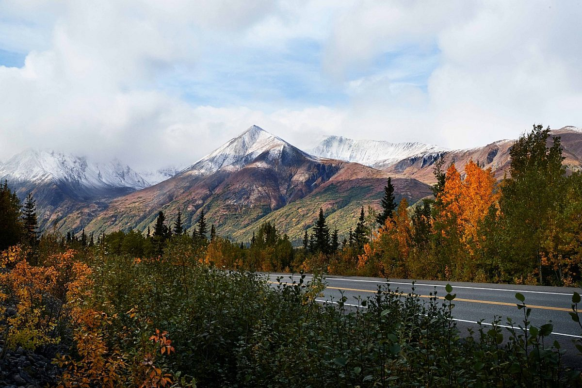 Scenic view of Alaska with mountain, trees and road
