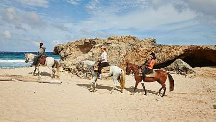 Horse riding in Aruba