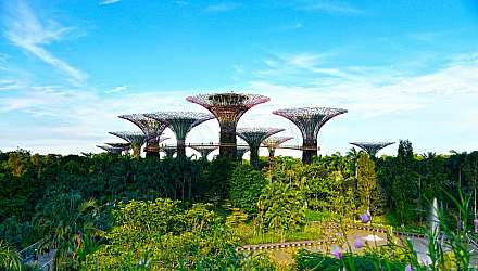 Gardens by the Bay in Singapore