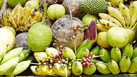 Selection of fruit, Ocho Rios