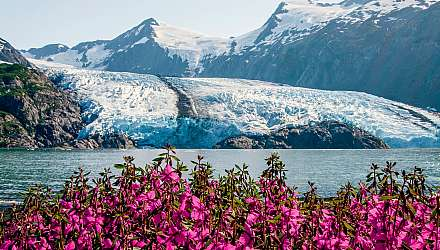 Scenic image of glacier in Alaska